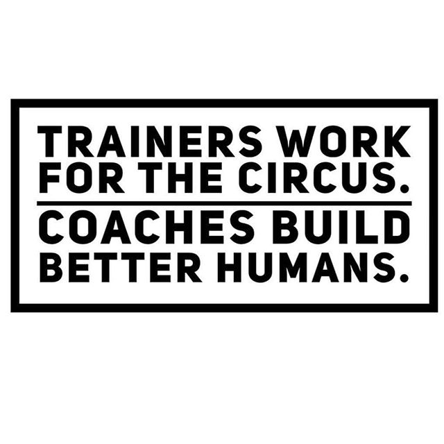 Be the coach someone needs in their life to help not only make the body better inside and out, but also help improve you as a person overall!  Let our coaches at LivePhysical Fitness in Downtown Riverside California do that for you!  Contact @bracyfit @alyssapmccormick17 or myself for more info.  #health #fitness #fit #fitfam #fitnessmodel #fitnessaddict #fitspo #workout #bodybuilding #cardio #gym #train #training #photooftheday #health #healthy #instahealth #traindifferent #active #strong #motivation #instagood #determination #lifestyle #diet #getfit #cleaneating #eatclean #entrepreneur #smallbusiness #2018