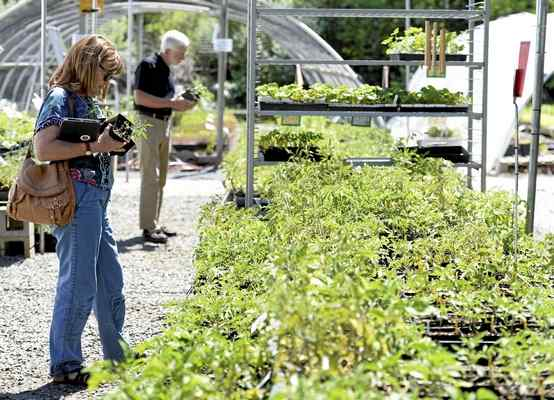 23rd Annual Open House Morning Sun Herb Farm - Saturday, May 5, 2018 9am-5pm