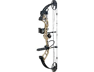 compound bow .jpg