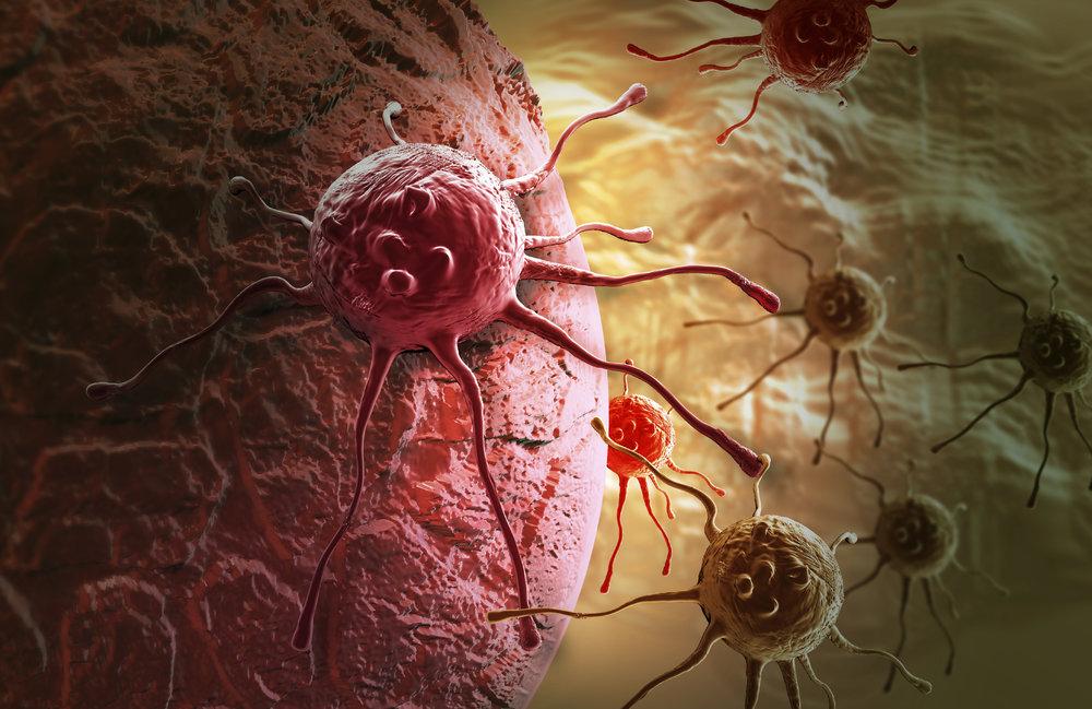 Cancer hallmarks -