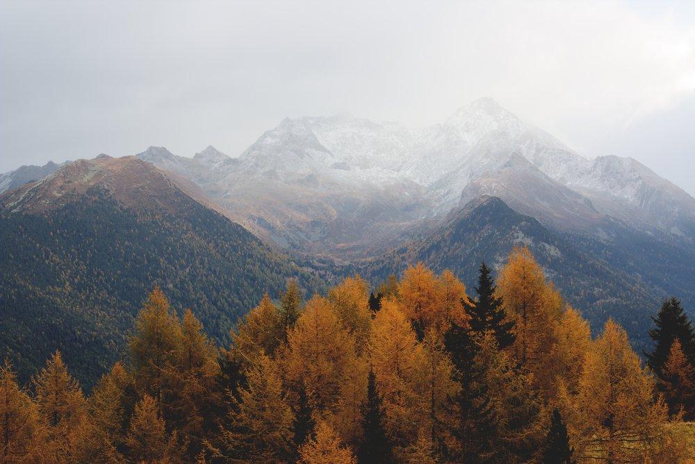adventure-aerial-autumn-640809.jpg