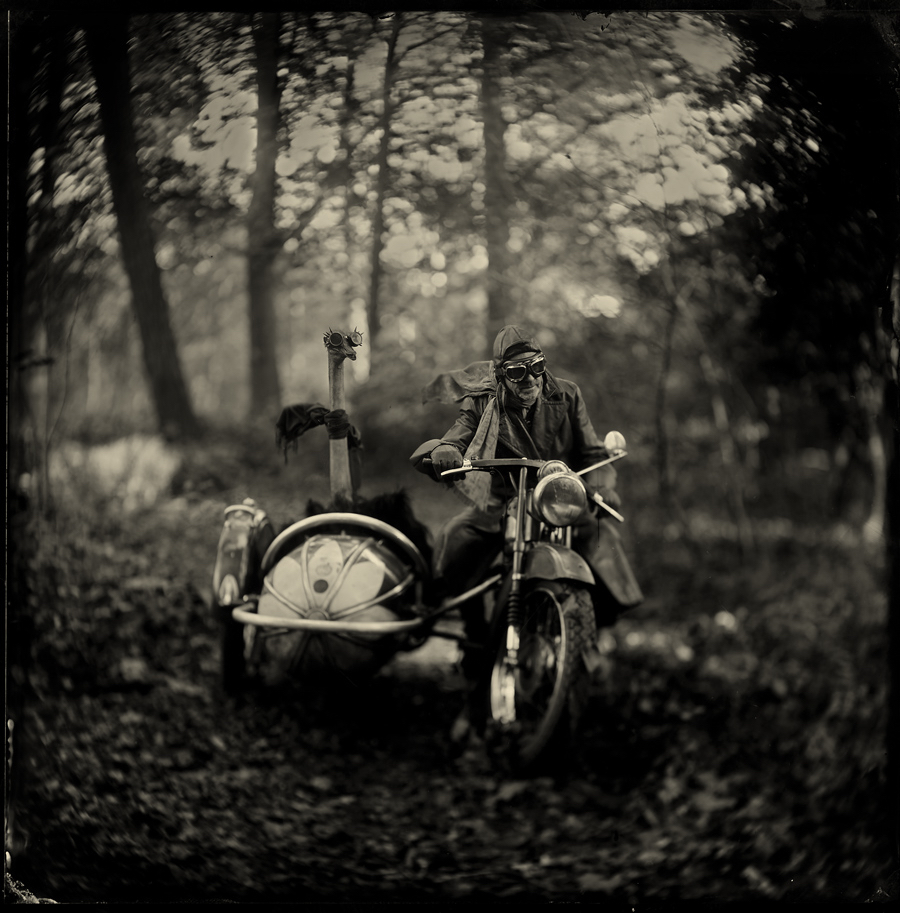 The wild bunch by Alex Timmermans  Available in different sizes. Price on request.