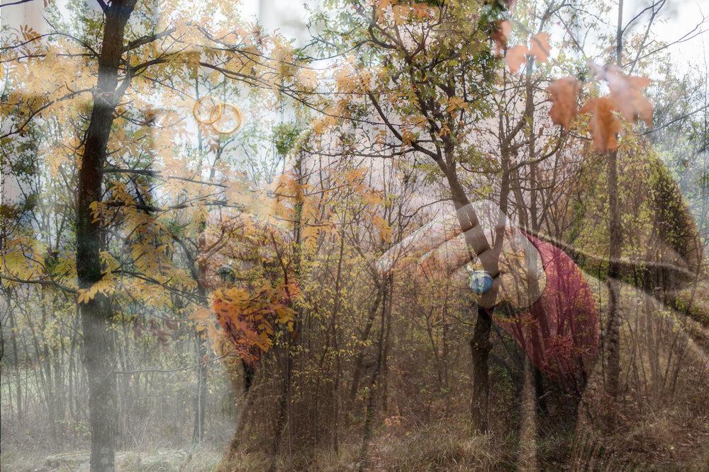 04 Gli Anelli_il Terzo Paesaggio © Cristina Panicali-04 Gli Anelli.jpg