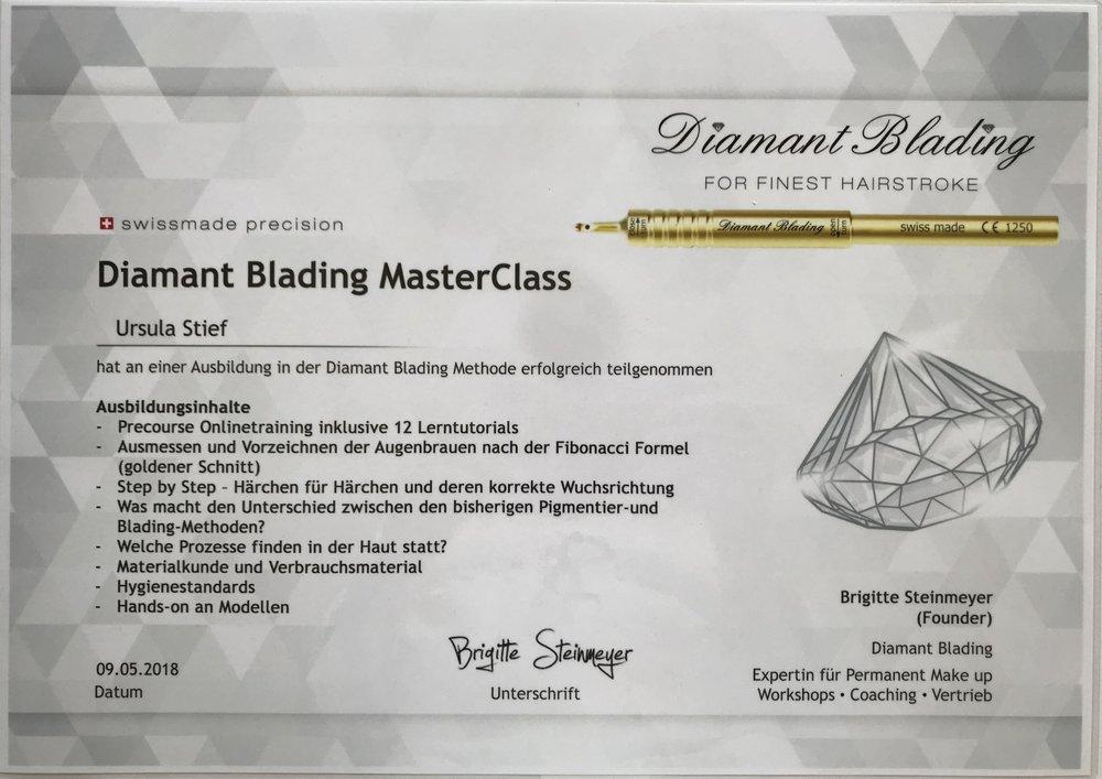 Diamant Blading MasterClass - Heute war es nun endlich soweit, nach einigen Monaten OnlineTraining, durfte ich heute meine Prüfung im Diamant Blading bei Brigitte Steinmeyer in der Schweiz, ablegen.