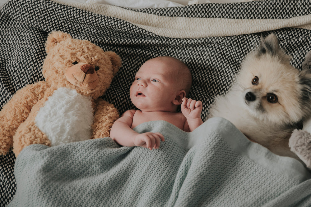 Ellinor, Jimmy, Frankie och Aaron - Lifestylefotografering Fotograf Nathalie Nyberg 0124.jpg