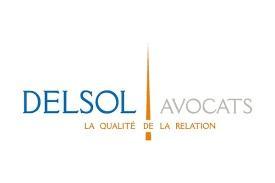 delsol logo.png
