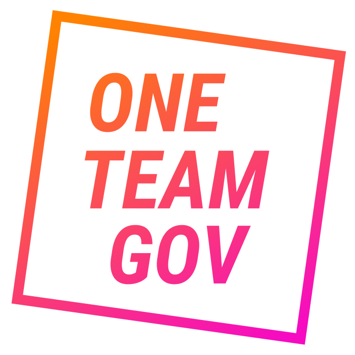 One Team Gov logo in colour