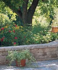 garden retaining wall.jpg