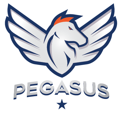 PEGASUS: RESISTANCE BASED - X marks the spot in this innovative resistance based system that combines weights, abs and not much resting. Purely designed for long lasting lean muscle mass.