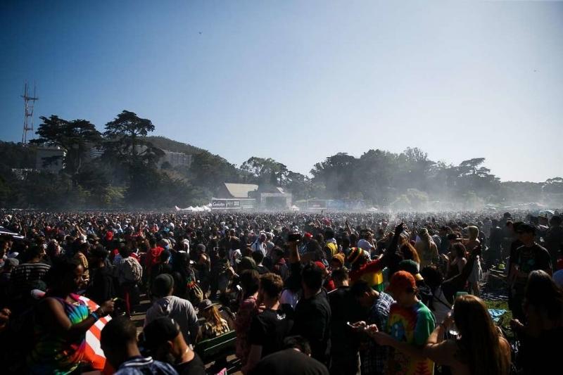 420 hippie hill.jpg