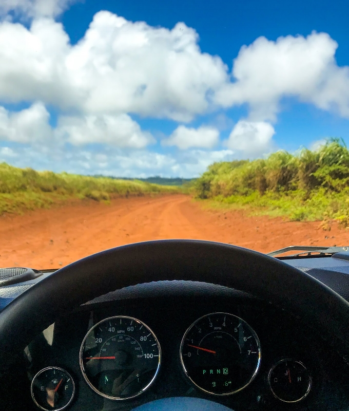 Hawaii 03.jpeg
