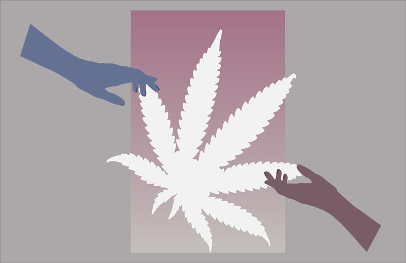 DM Cannabis Community 3.jpg