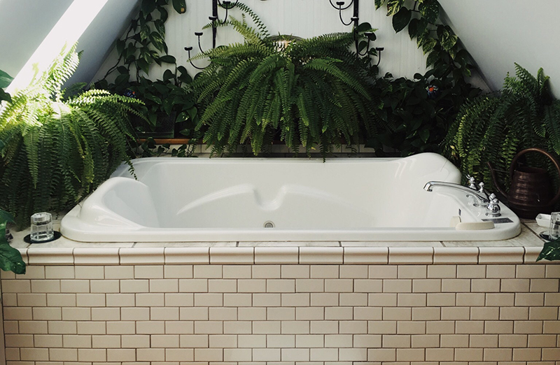 Green house plants surround white tub with sun beam shooting in on left side of image.