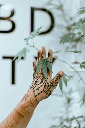 BeautyCon guest shows off cannabis inspired henna as they reach out entangling fingers in hemp plants.