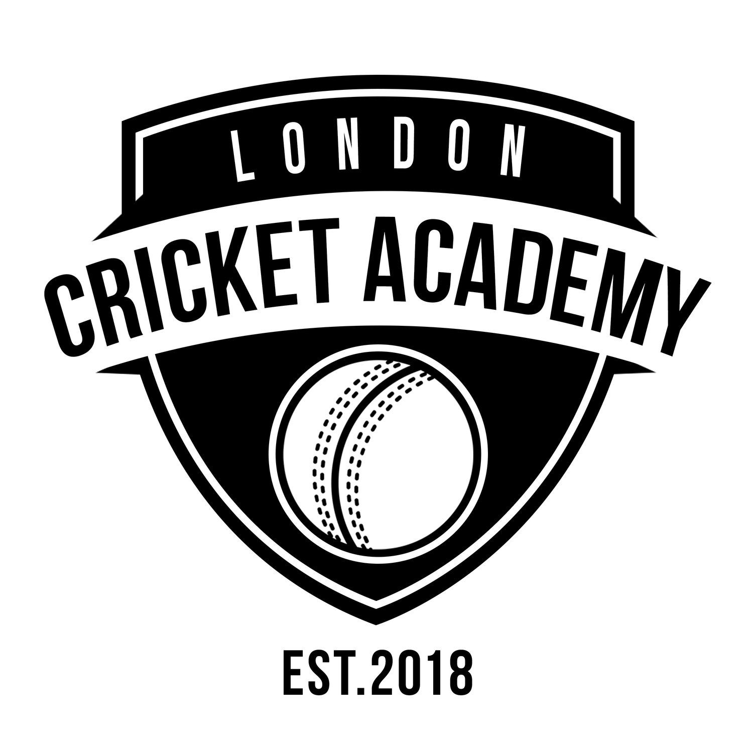 london cricket academy