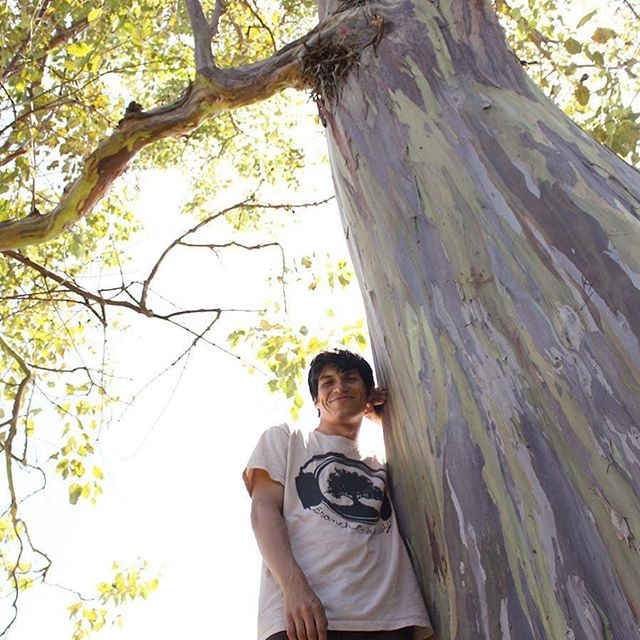 #repost Thanks @thegreatmojavi for representing @branchoutmusic .  Blessed to have met him and Johnny at @calirootsfest 2013.  #tree #friends #music #branchoutmusic #branches #love #live #california