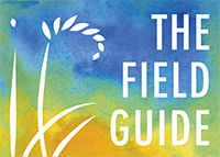 THE FIELD GUIDE TO A REGENERATIVE ECONOMY