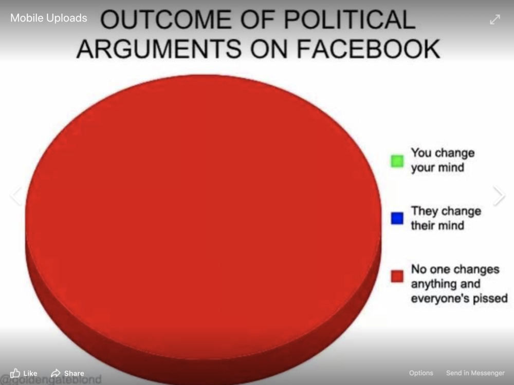 Political beliefs on Facebook | Entreprenista Mama