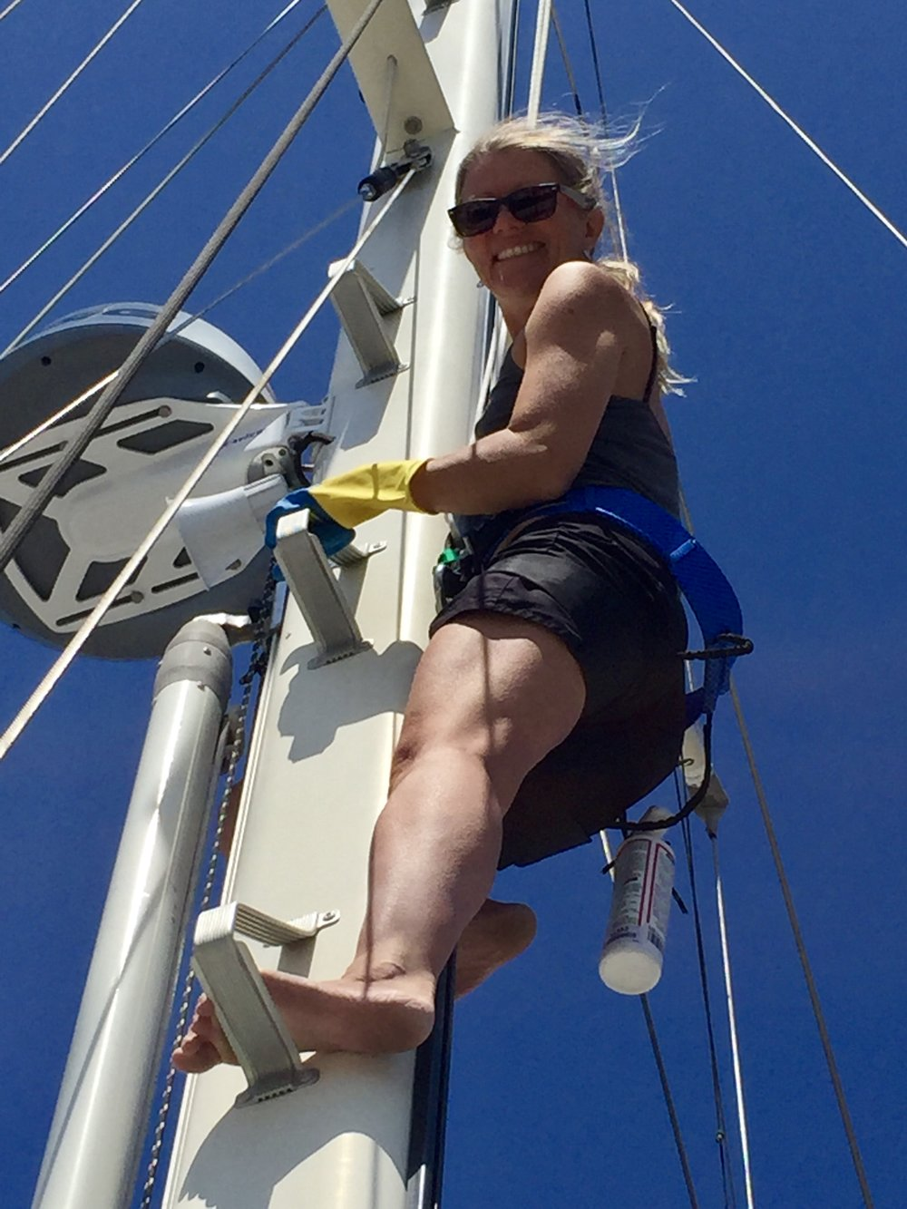 Which day did we choose to climb the mast? Why, the day it was gusting 30 in the harbor, of course. Thank you, mast steps.