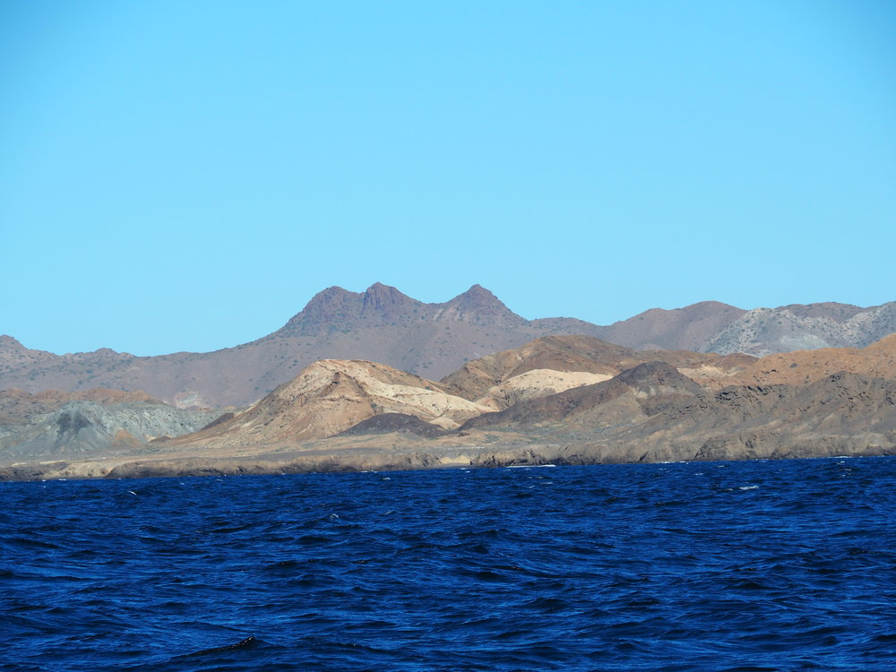 Geologically speaking, Pacific Baja is a child's drawing of incongruous landscapes. Spiky volcanic peaks juxtaposed next to softly weathered domes, deep red cliffs split by salt and pepper granite and volcanic structures abutting coastal plains. It is the best evidence I have yet seen that certain aspects of Creation were perhaps delegated to committee.