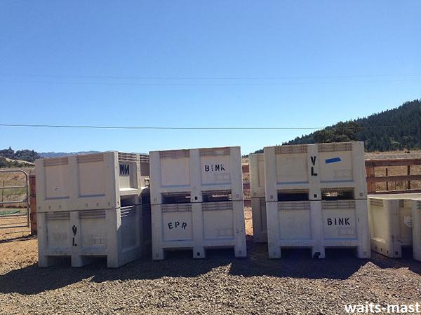 Can you spy the Waits-Mast bin? Photo: J. Waits