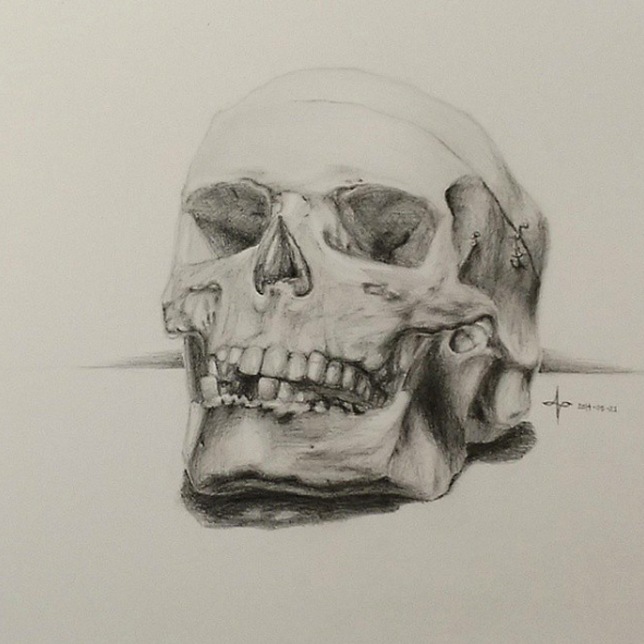 Pictured: Drawing of a skull by Aubrie Lee. Photo Credit: Aubrie Lee  @aubrieality