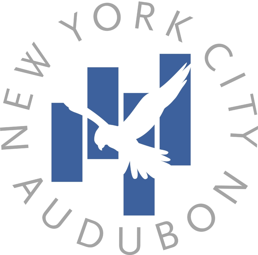 nyca-logo-high-res.jpg