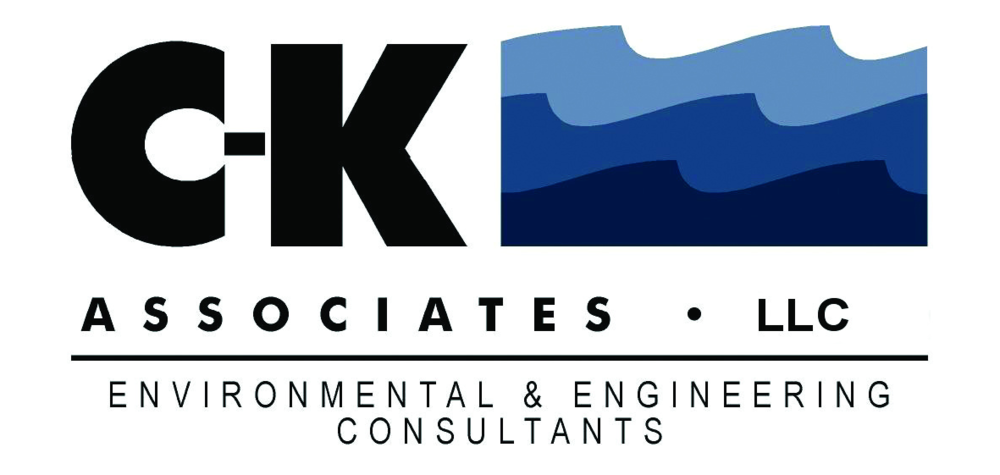 CK and Associates-Color_E.png