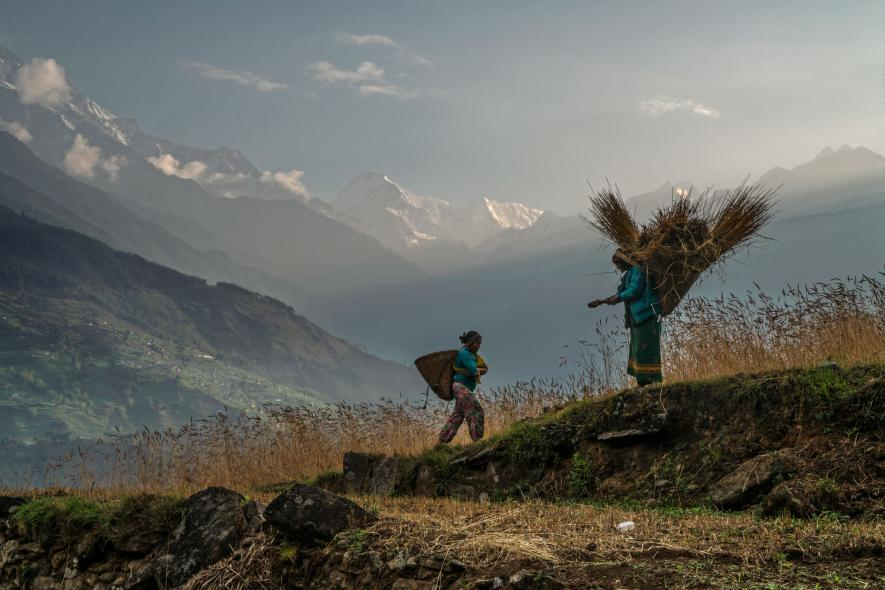 Honey Hunters of Nepal -