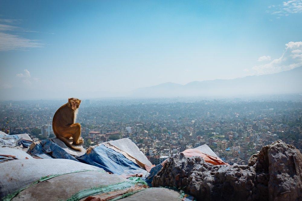 Swayambhunath-Kathmandu-Nepal