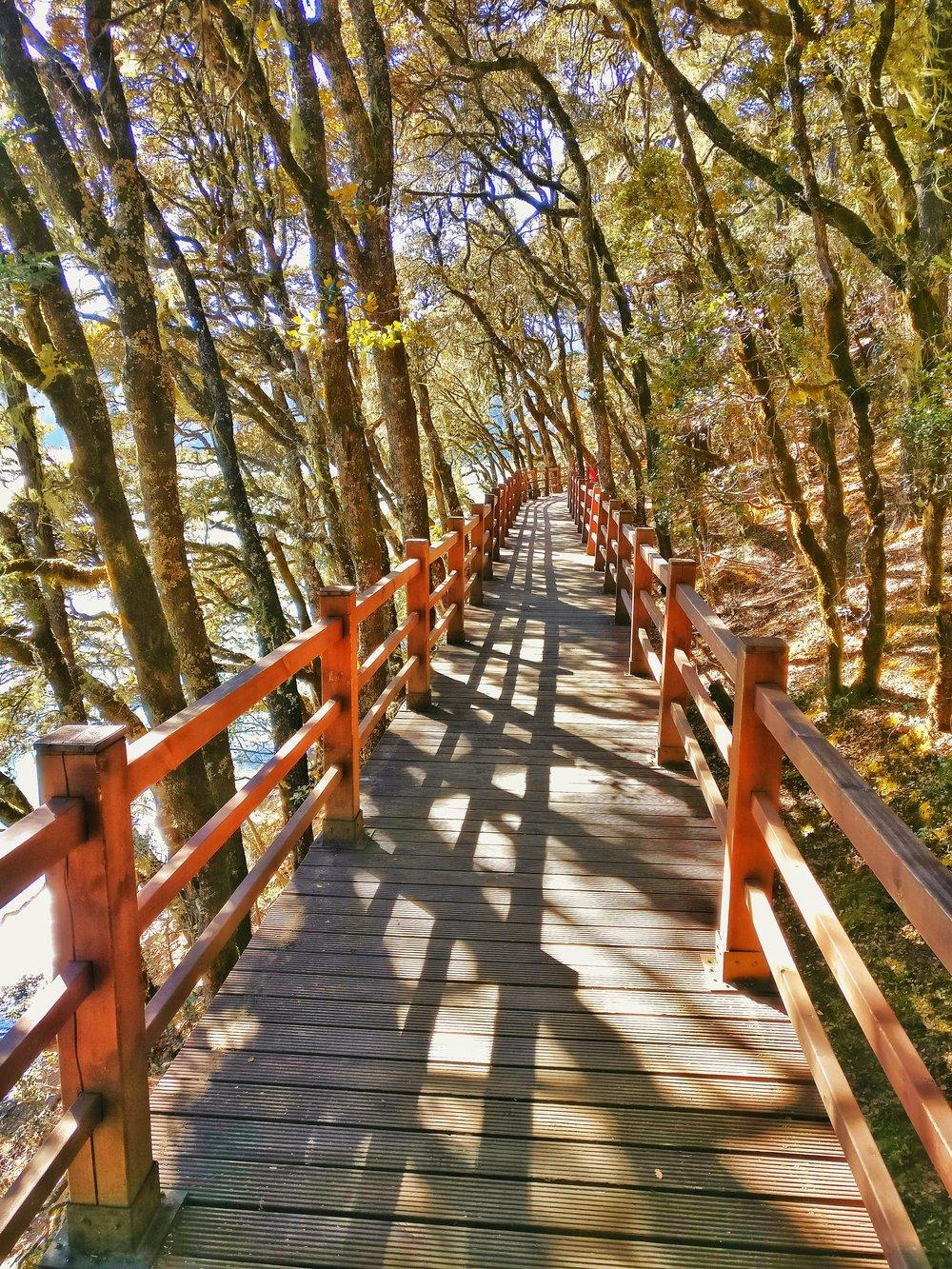 bitalake-potatsonationalpark-yunnan-world-heritage-site