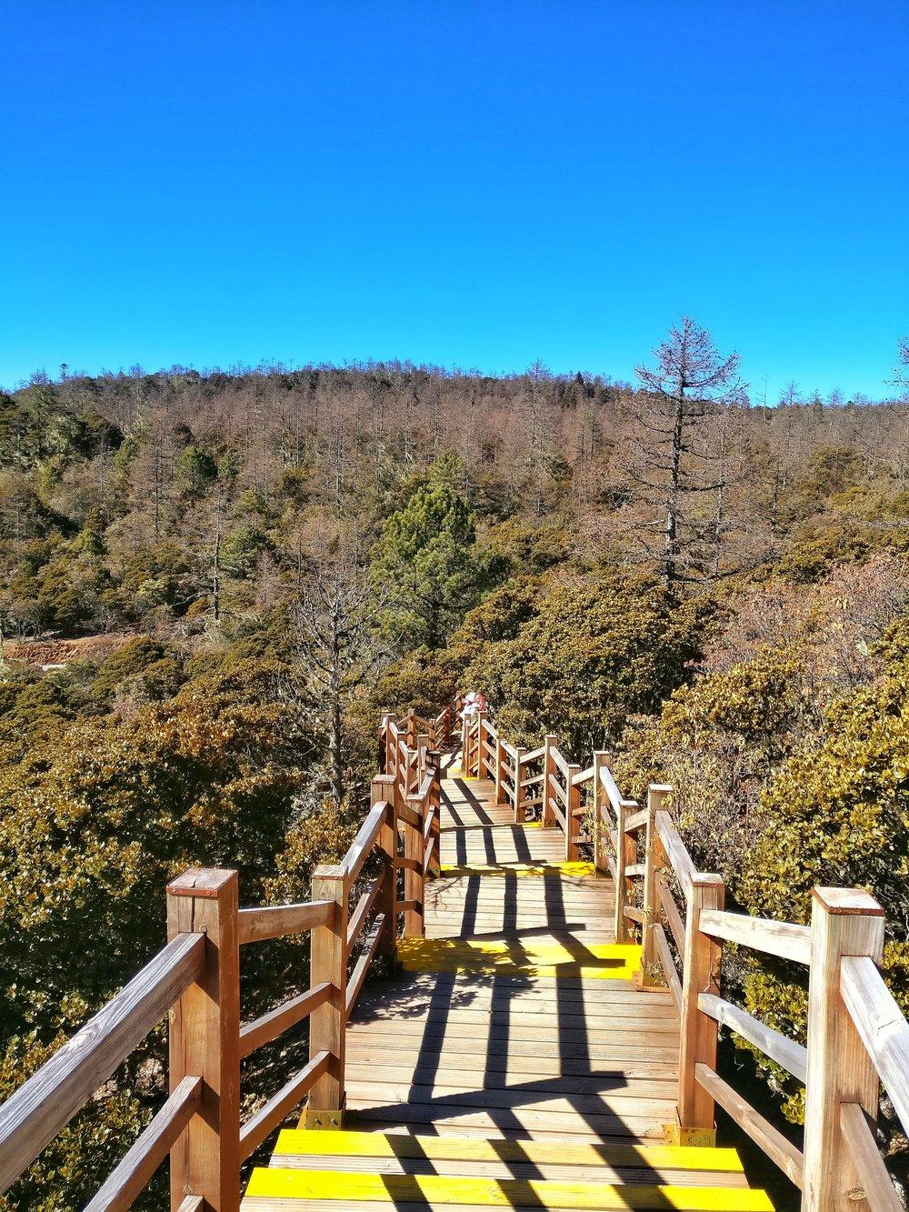 potatsonationalpark-yunnan-world-heritage-site