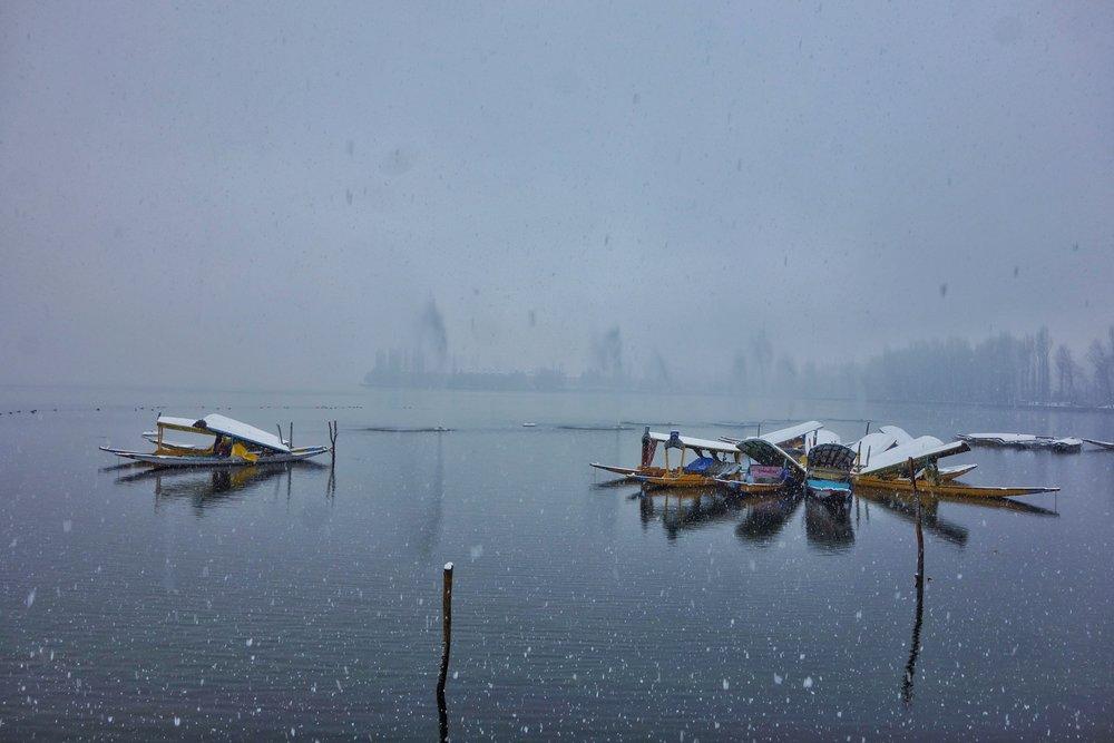 Shikaras on the Dal Lake during a Snowfall