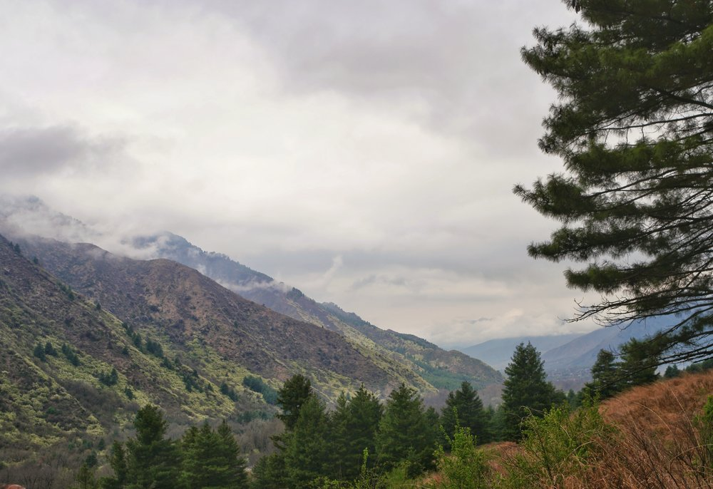 Clouds building up at the Dachigam National Park. It snowed the next day
