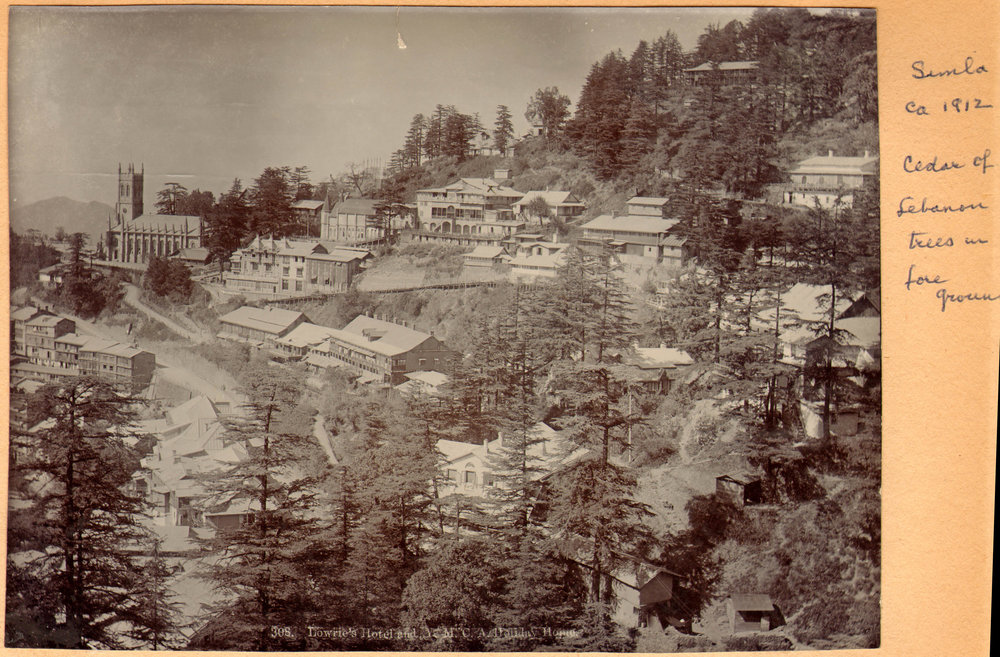 shimla-1912