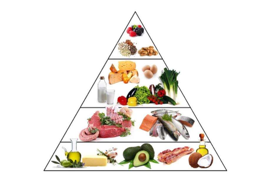 Ketogeeninen ruokapyramidi