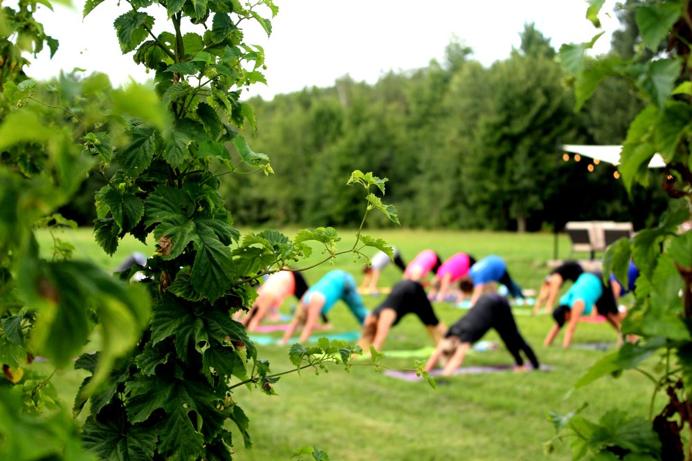hops yoga far away shot.JPG