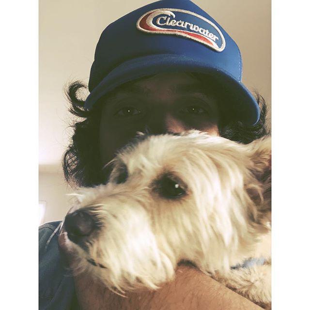 @elvisandthecity  #reallove #terrierlove