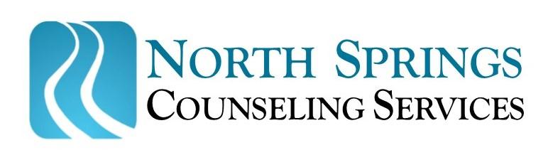 NS Inc Logo - 2.jpg