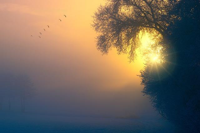 fog-3196953_640.jpg