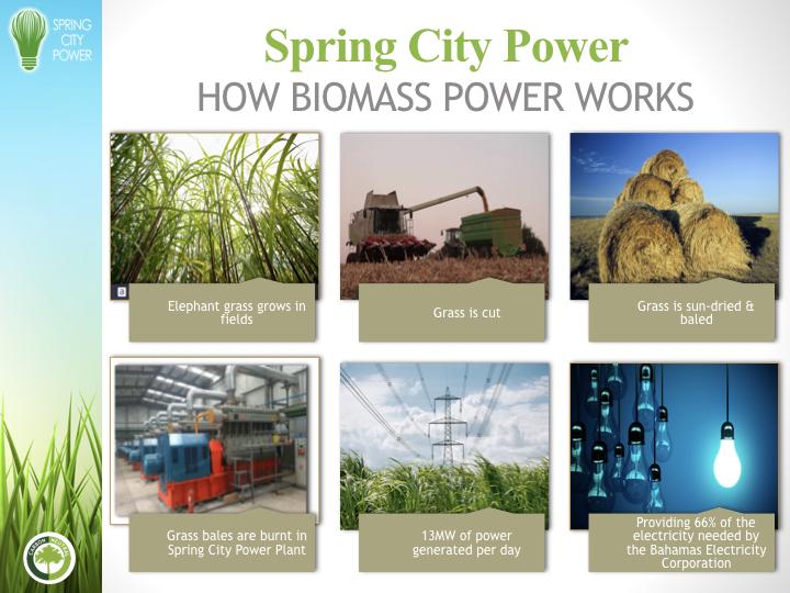 Spring City Power 2018.005.jpeg