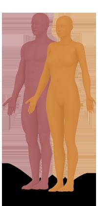 bodies-06a266ad57b91262b3cda849ca7e7e61.png