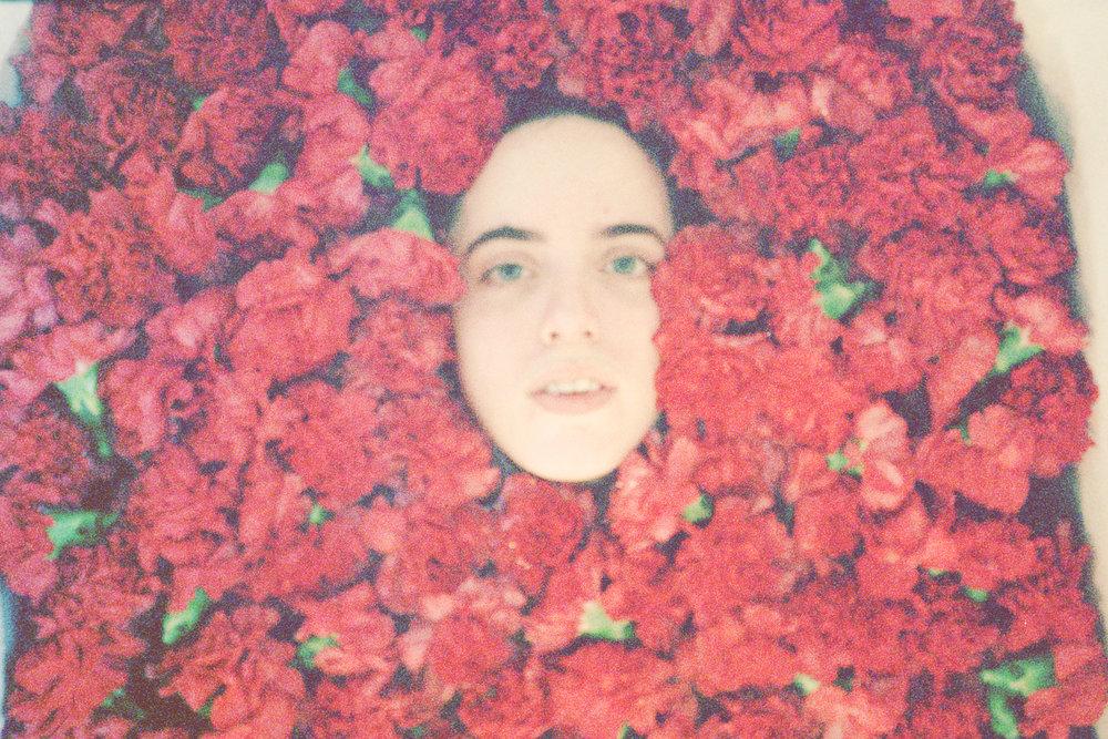 Rose_Hill_09edit2.jpg