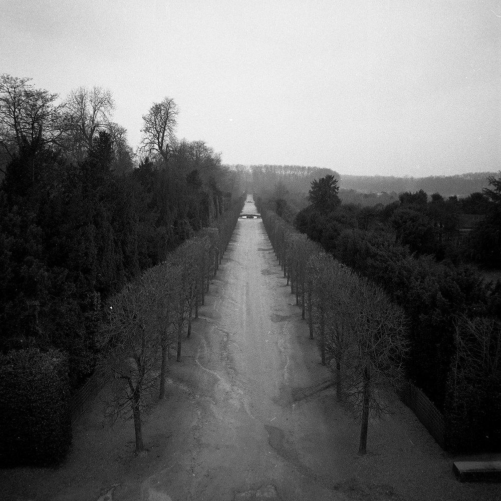 Versailles_Eye_Edit.jpg