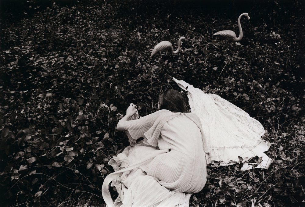 Kayleigh_Flamingoa.jpg