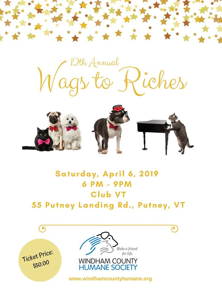 windham county humane society clubvt wags to riches party.jpg