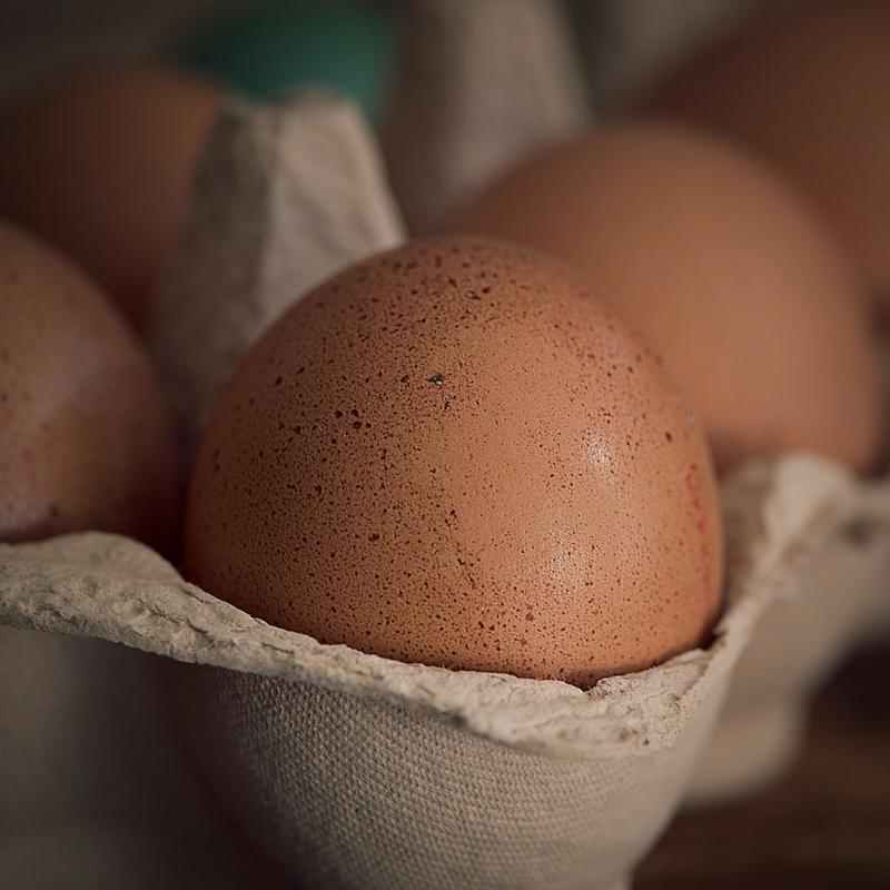 Butchie's Organic Farm_Eggs.png