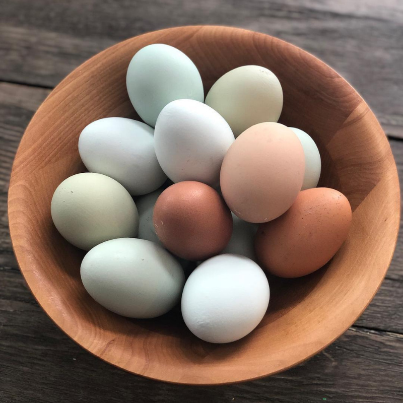 White Stag Farms_Eggs.png