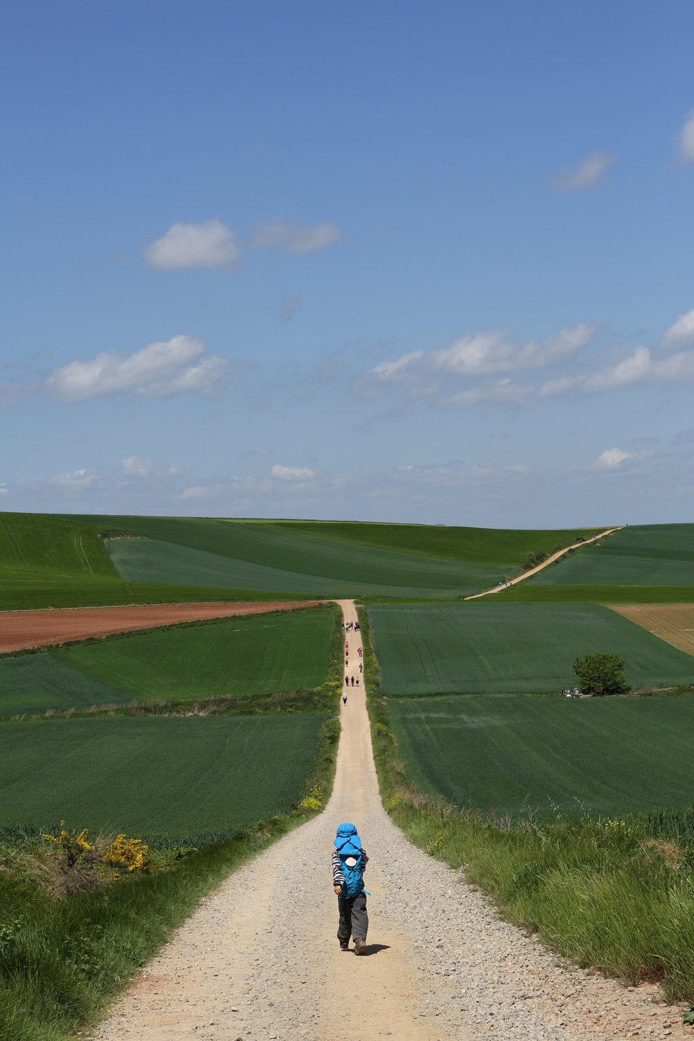 A young Korean boy takes off ahead of his parents while hiking 800kms along the Camino de Santiago in Spain.