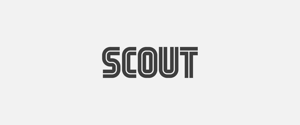 Scout2.jpg